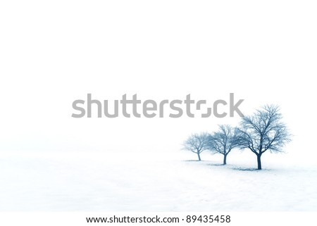 Trees on a snow covered field