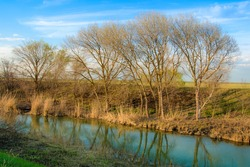 Trees on the Bank of the canal are reflected in the water against the blue sky. Spring landscape, nature