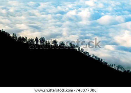Trees on the mountainside against the background of storm clouds. Light and shadow. #743877388