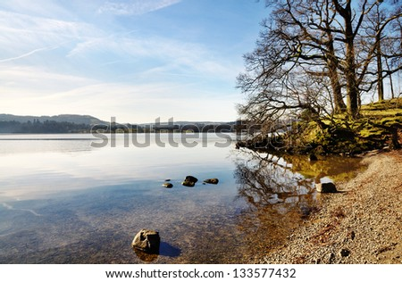 Trees on the shore of Lake Windermere