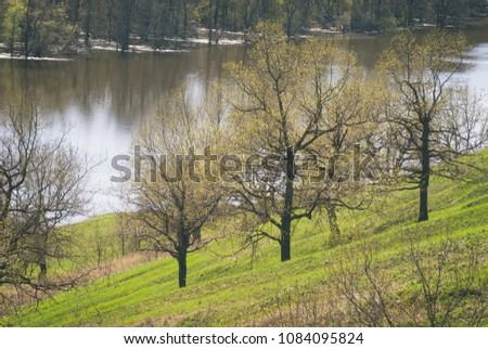 Trees on the slope of a green hill in the spring against a background of flooded meadows and a river #1084095824