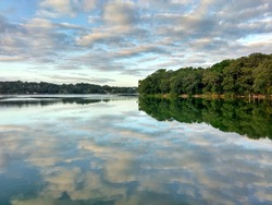 Trees reflected in the Salpeten Macanche Lagoon, Flores Peten, Guatemala