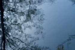 trees reflectin on blue rippled water surface