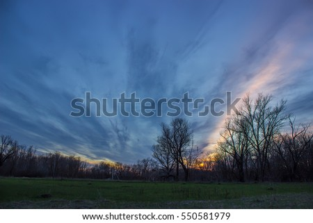 trees silhouetted against the evening sky with clouds, early spring #550581979
