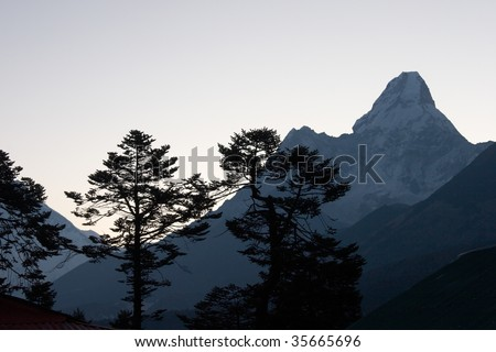 Trees silhouettes with Ama Dablam mountain at sunrise