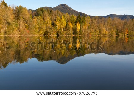Trees with autumn leaves on a lake in Bavaria, Germany