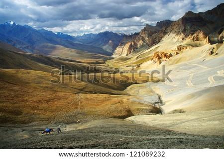 trek in the Himalayas, Ladakh, India