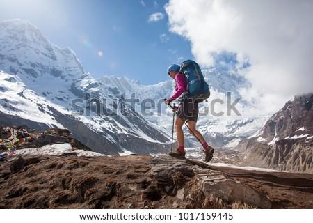 Trekker on the way to Annapurna base camp, Nepal #1017159445