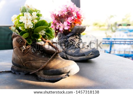 trekking hiking boots recycling to decorate with flowers