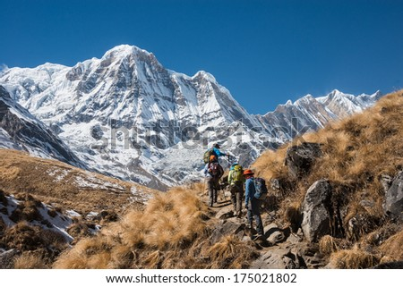 Trekking in Annapurna region, with Annapurna South in background, Nepal #175021802