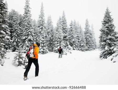 Trekking in harsh winter conditions