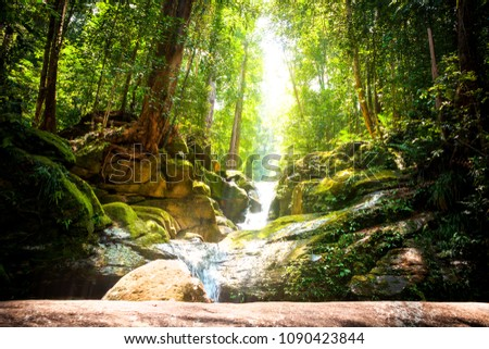 Trekking in the jungle of Sarawak on Borneo with small waterfall and sunlight, Malaysia