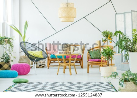 Trendy black armchair with pillow, urban jungle and patterned carpet in fashionable living room interior with rattan sofa, armchairs and coffee table #1255124887