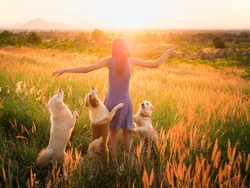 Trendy girl in stylish summer dress with dog friend walking in the field with flowers in sunlight,wild nature,sunset in mountain