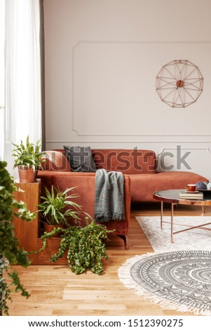 Trendy living room interior with brown corner sofa with pillows and blanket in fashionable living room interior #1512390275