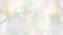 Trendy spring background, green leaves, sunshine, bokeh in multicolored pastel colors. Colorful background, horizontal illustration.