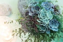 Trendy wedding bouquet made out of succulents on a pastel background