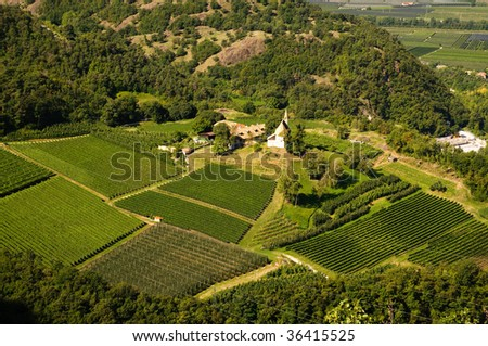 Trentino Alto Adige landscape. Panoramic view of a farm (Trentino Alto Adige, Italy) that produces wine and fine apple typical of the area.
