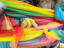 Tri-color fabrics ,actually there are multi-colors , tied around  the tree  to sacrifice the spirit of the god in tree, from the belief that when we give the it will bring happiness and lucky