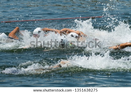 Triathlon tournament swim at sea #1351638275