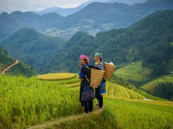 Tribal farmer in costume of smile on rice terraces mountain