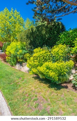Trimmed bushes, flowers and stones in nicely decorated front yard, lawn of the house. Landscape design.