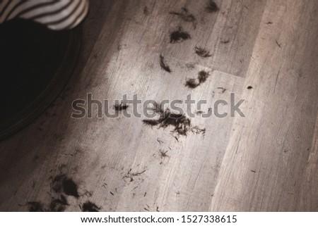 Trimmed dark hair on the floor. Haircut process. Barbershop haircut. Men's haircut.