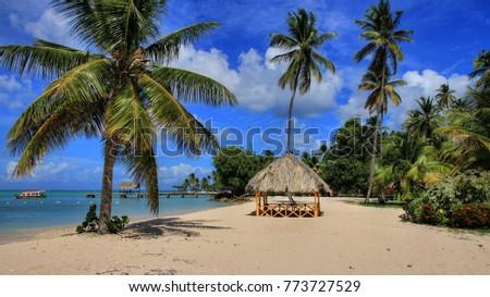Trinidad & Tobago 2017 - caribbean beach with palms Stock photo ©