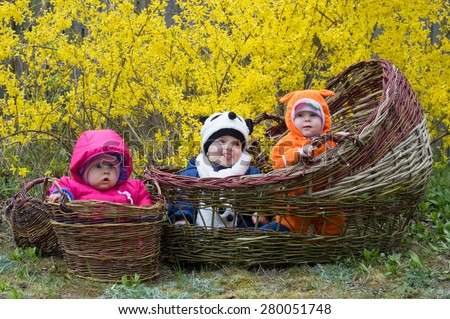 Trio of babies in flowers basket