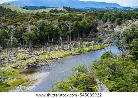 Shutterstock Trip in Tierra de Fuego