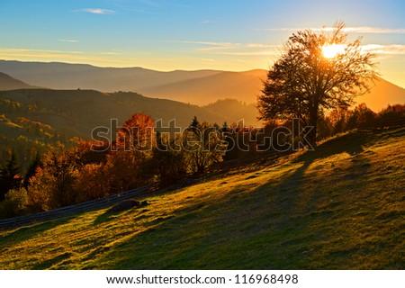 trip on mountain locality