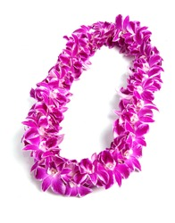 Triple Strand Hawaii flowers lei necklace made from  Orchid Flower, Dendrobium Hybrid, Phennapha Pink, from Thailand on white background.