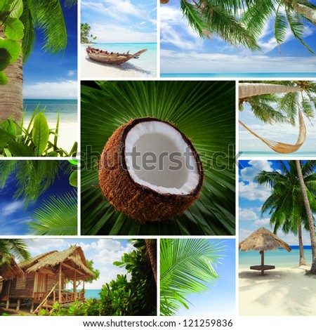 Tropic theme collage composed of different images