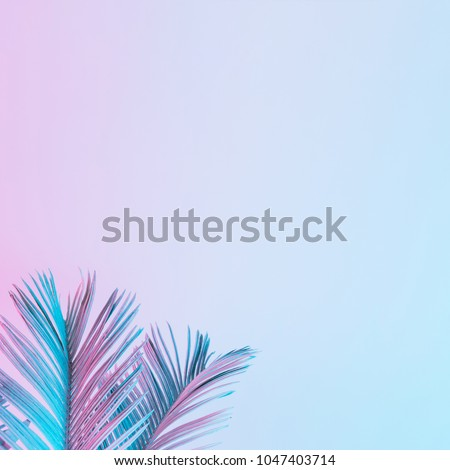 Tropical and palm leaves in vibrant bold gradient holographic colors. Concept art. Minimal surrealism. - Shutterstock ID 1047403714