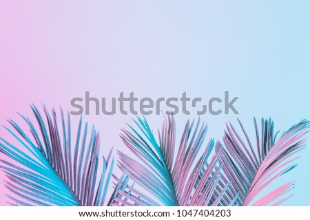 Tropical and palm leaves in vibrant bold gradient holographic colors. Concept art. Minimal surrealism. #1047404203