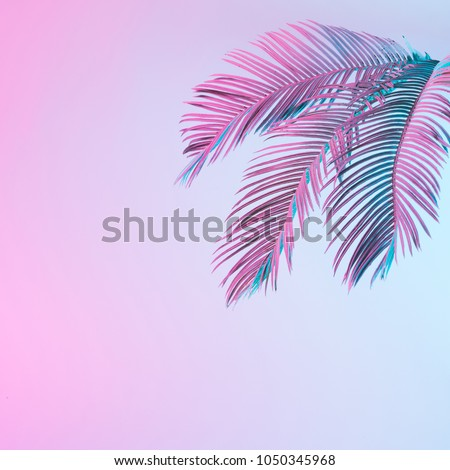 Tropical and palm leaves in vibrant bold gradient holographic neon  colors. Concept art. Minimal surrealism background. #1050345968