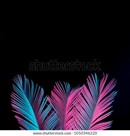 Tropical and palm leaves in vibrant bold gradient holographic neon  colors. Concept art. Minimal surrealism background. #1050346220