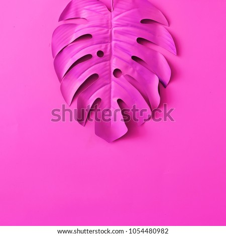 Tropical and palm leaves in vibrant bold pink neon color. Concept art. Minimal surrealism background.