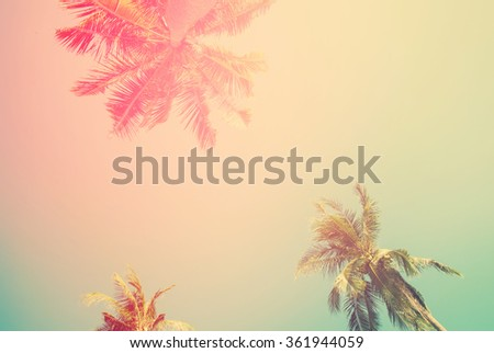 Tropical  background with palm trees in sun light. For Holiday travel design. Toned pastel effect