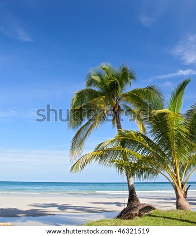 Tropical background with palm trees, sand, sea, beach and sky.