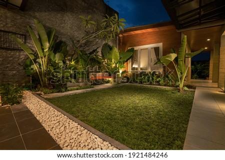 tropical Backyard Garden Illumination. Illuminated Garden at Night with Various of Plants