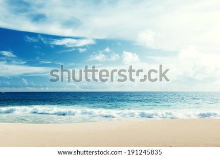 tropical beach #191245835