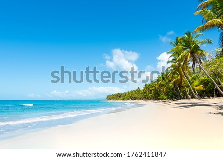 Tropical beach amazing view. Clear white sand beach in summer day. Waves of blue sea break on sunny beach. Cuba palms beach landscape background.