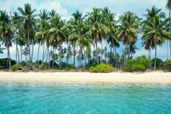 Tropical beach and coconut palms in Koh Samui, Thailand, Asia