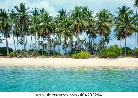 Tropical beach and coconut palms in Koh Samui, Thailand, Asia #404203294