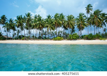 Tropical beach and coconut palms in Koh Samui, Thailand, Asia #405275611