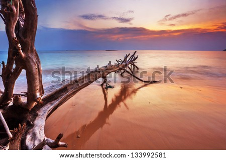 Tropical beach at beautiful sunset Nature background