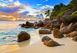 Tropical beach at sunset - nature background
