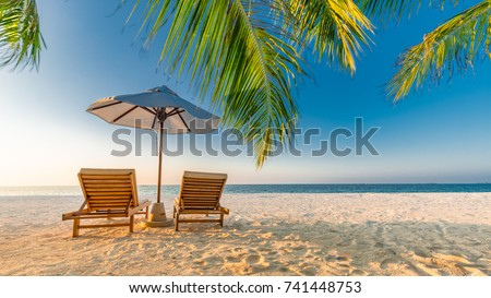 Tropical beach background as summer landscape with lounge chairs and palm trees and calm sea for beach banner #741448753