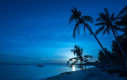 Tropical beach background of night view from Dumaluan Beach at Panglao Bohol island with  cloudy blue sky full moon and palm trees. Travel Vacation